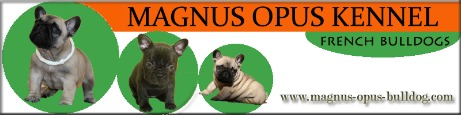 Magnus kennel